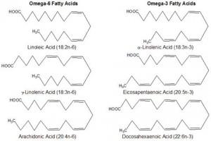 Представители семейств омега-3 и омега-6 полиненасыщенных жирных кислот