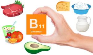 Витамин В11